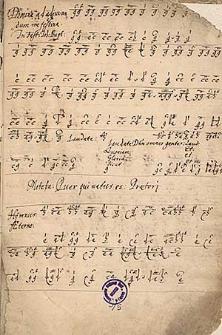 Tabulatura organowa [niemiecka] zawierająca 75 utworów 2-8 głosowych