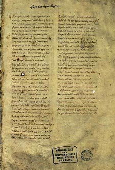 [Commentarius in Apocalypsim]