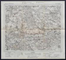 Karte des westlichen Russlands 1:100 000 - K 35. Iwangorod