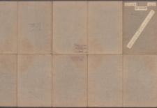 Atlas geologiczny Galicyi 1:75 000 - Pas 9 Słup XV Borszczów