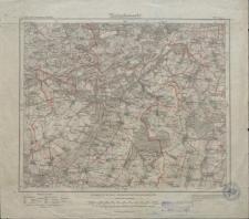 Karte des Deutschen Reiches 1:100 000 - 349. Gostyn