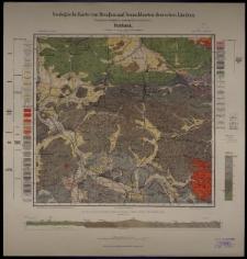 Geologische Karte 1:25 000 - 3011 Ruhbank