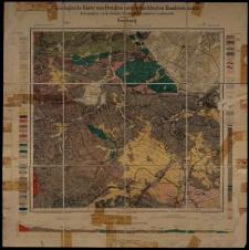 Geologische Karte 1:25 000 - 3012 Freiburg