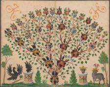 [Materiały genealogiczne i heraldyczne dotyczące rodzin, głównie szlacheckich, z Łużyc i częściowo ze Śląska]