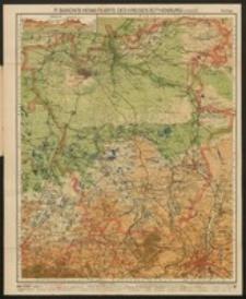 P. Baron's Heimatkarte des Kreises Rothenburg/Lausitz