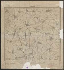 Wäldchen 3017 [Neue Nr 5168] - 1907