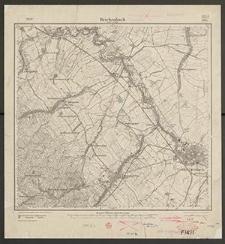 Reichenbach unter d. Eule 3075 [Neue Nr 5265] - 1919